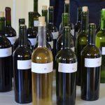 vinhos-coloniais